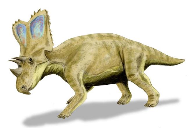 2--chasmosaurus