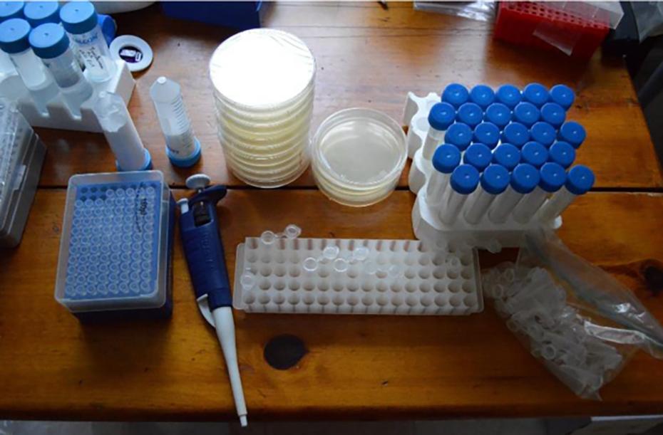 home-crispr-genome-editing-kit-4