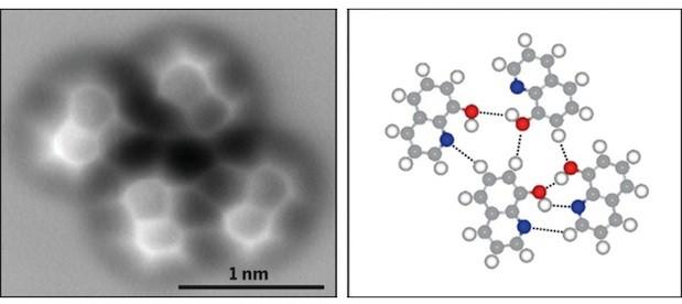 hydrogen-bond