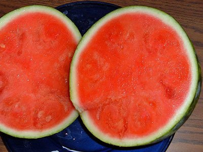 modern-watermelon